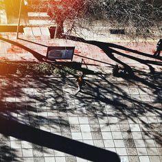 Serie #Urbano N°2 . . #vsco #vscogood #vscocam #snapseed #snapshot #snap #eyeem #igers #instamoment #hallazgosemanal #city #travel #walk #photography  #instagram  #ig_argentina #moodygrams #moodyxfujifilmx #artofvisuals #bevisuallyinspired #mg5k #argentina  #nature  #createcommune #visualambassadors #urbanart #walk #archdaily #architecture