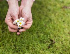 1 důležitý fakt, proč si tělo ukládá tuk a jak to změnit Food And Drink, Floral, Diet, Flowers, Flower