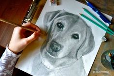 Jenny's Sketchbook: Art Tips