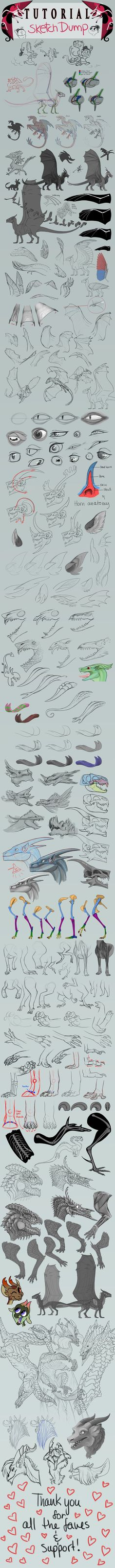 Some anatomy. Dragons resources! by SammyTorres