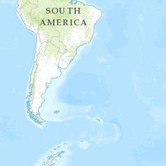 Brazil | Forest Legality Alliance