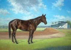"""""""Ben's Cat""""  Maryland-Bred horse of the year 2013&2014. Amazing boy!  #classicalrealism #horseartist #equineart #sportingart #horses #equineartist #contemporaryart #contemporaryrealizm#bloodhorse #laurelpark #horseracing #marylandhorseracing #marylandmillion"""