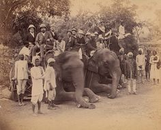 Four Seated Elephants with Western Travelers and Attendants, Jaipur, India 1860s–70s