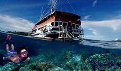 #Raja_Ampat in #Papua - #Indonesia http://en.directrooms.com/hotels/district/1-13-1669-23329/