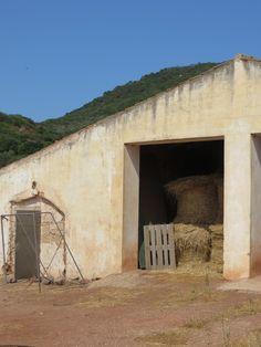 Ferreries, Menorca 2013 by Yolaida Duran