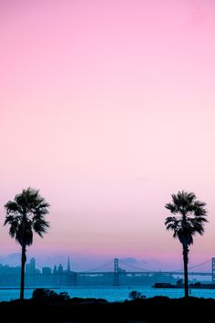 San Francisco, California by @mbphotograph