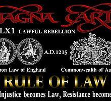 Magna Carta - Rule of Law by Haydn Bucher