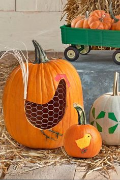 FOR THE HEN:Cut a hole in the bottom of a large pumpkin, and scoop out…