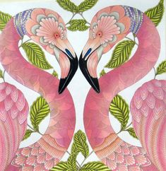 Tropical Wonderland – Page 4 – Millie Marotta Coloring Book Art, Floral Art, Art Corner, Flamingo Art, Millie Marotta Coloring Book, Color Pencil Art, Tropical Art, Abstract Floral Art, Fairytale Art