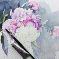 Все еще в процессе... Вчерашние +40 разрушили задуманное. #рисую_все_что_вижу #art #artwork #paint #painting #draw #drawing #watercolor #watercolorpainting #acuarela #aquarelle #topcreator #art_we_inspire #process_of_creativity #акварель #pivoine #peony #пионы