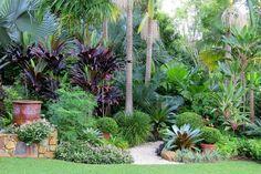 Trachelospermum jasminoides 'Variegatum', Nandina domestica, Bismarkia palm, Cordyline 'negra', Archontophoenix palm, Buxus japonica, liriope, Cycad, Licuala ramsayi, Alcantara, The Only way is to experiance it. #RealPalmTrees #GreatDesignIdeas #LandscapeIdeas #2015PlantIdeas RealPalmTrees.com #BeautifulPlant #PalmTrees #BuyPalmTrees #GreatView #backYardIdeas #DIYPlants #OutdoorLiving #OutdoorIdeas