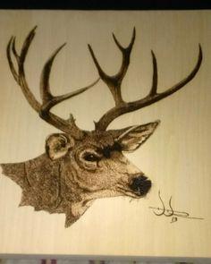 """Buck"" woodburning, wood burning, pyrography"