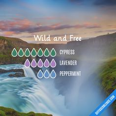 Wild and Free - Essential Oil Diffuser Blend