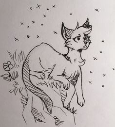A GIF of Iris// it was so hard to make everything look similar Warrior Cats Books, Warrior Cats Art, Animal Drawings, Cute Drawings, Cartoon Drawings, Cat Drawing Tutorial, Cat Anatomy, Warrior Cat Drawings, Cat Sketch