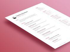 Resume by Franklin Schamhart