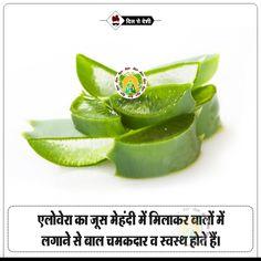 #Dilsedeshi #health Good Health Tips, Natural Health Tips, Health And Beauty Tips, Healthy Tips, Natural Skin, Natural Beauty, Home Health Remedies, Natural Health Remedies, Health Facts