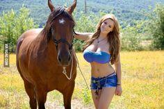 Horses are majestic creatures.