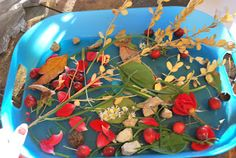 Fall Treasure Hunt from A Hodgepodge Life