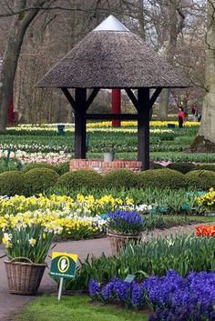 Keukenhof Gardens, The Netherlands