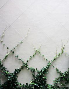 Quelques filins métalliques avec des plantes grimpantes et voici, comment agrémenter un mur. D'autres exemples pour cacher un mur : www.amenagementdu...