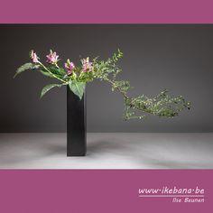 Ikebana Arrangements, Flower Arrangements, Sogetsu Ikebana, Cylinder Vase, New Theme, Floral Designs, Curriculum, Decorations, Flowers