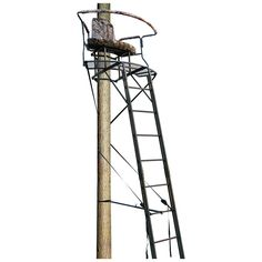 Save $70.01 (28%) - Big Dog 17.5' Stadium Series XL 2 Man Ladder Tree Stand