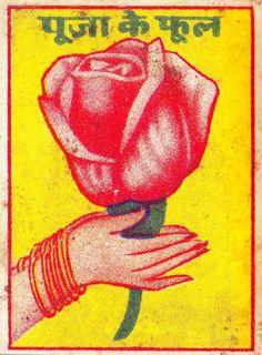 vintage rose illustration