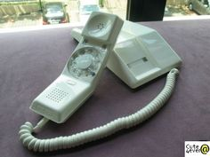 Rotary phones? My parents still had one in the mid 90's just one in a bedroom.