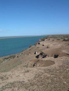 Péninsule Valdés, Argentina#Située à quelques km de Trelew et Puerto Madryn, la péninsule, réserve naturelle inscrite au Patrimoine mondial de l'Unesco, est une énorme excroissance de 97 km de large sur 63 km de long, reliée au continent par un isthme de 35 km. Grâce à son microclimat exceptionnel, la péninsule possède une faune exceptionnelle : éléphants de mer, baleines, lions de mer, guanacos, manchots...#http://urlz.fr/3gde#ganeche.com#5,6,12