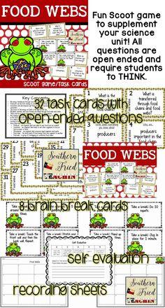 Food Webs Food Chains