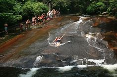 Sliding Rock-Pisgah National Forest, NC. (Good spot for Tommie to rip his bathing suit again.)