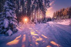 Winter Mood by Ole Henrik Skjelstad | 500px: Popular photos | Bloglovin'