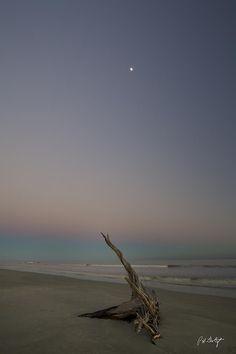 ✯ Driftwood Moon