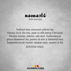 Namaste este un vechi salut indian in care se regaseste puternica forta spirituala de deschidere a sufletului in fata celuilalt.  Fiecare dintre noi este o parte din Constiinta Suprema si astfel exista o scanteie divina in noi prin care suntem conectati, avand aceeasi natura fundamentala.  Namaste reprezinta renuntarea la propriul Eu in fata celuilalt. #haiperacheta In Writing, No Response, Mindfulness, Cabana, My Love, Namaste, Quotes, Pretty, Socrates