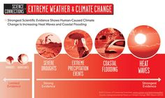 How Do We Know that Humans Are the Major Cause of Global Warming?  What else creates global warming?