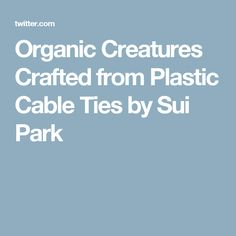Organic Creatures Crafted from Plastic Cable Ties by Sui Park