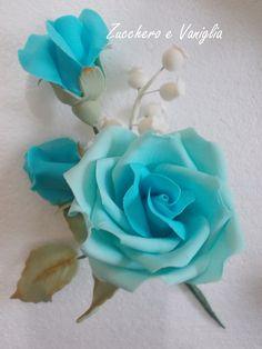 Rose turchese