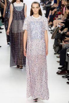 Christian Dior Fall 2014 Ready-to-Wear Fashion Show - Irina Liss (Supreme)