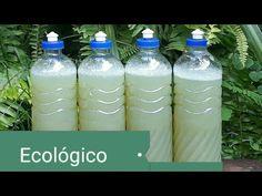 Faça limpa alumínio líquido ecológico com uma Folha de uma fruta fácil de fazer. - YouTube