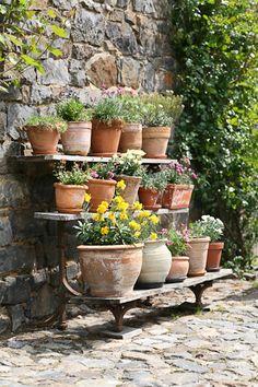 Hoeve Vernelsberg - Art Q-Linair - Trendy Catering Voerendaal - Limburg Herb Garden Design, Garden Pots, Vegetable Garden, Small Herb Gardens, Outdoor Gardens, Dream Garden, Garden Planning, Garden Projects, Garden Inspiration