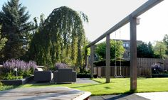 Functionele pergola. Een schommel voor de kids en mooi sfeer element in de tuin.