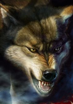 Wolf Picture  (2d, illustration, animal, wolf, rage)