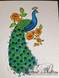 Stampin' Up! Perfect Peacock color with Derwent Inktense pencils . watercolor paper and gorgeous watercolor look of watercolor with pen and ink . Best Watercolor Pencils, Watercolor Cards, Peacock Logo, Peacock Art, Fabric Painting, Painting & Drawing, Perfect Peacock, Painting On Glass Windows, Derwent Inktense