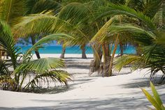 Passion Island, Cozumel Mexico