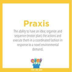 Praxis: The ability to have an idea; organize and sequence (motor plan) the actions and execute them in a coordinated fashion in response to a novel environmental demand.