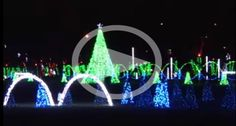 Shadrack's Christmas Wonderland-this is really cool. They are running this show in 4 locations. One is in Myrtle Beach at the Pelican's Stadium. You put your radio on their frequency and the lights are synchronized to the music. Just love it! They are also in Nashville, TN, Sevierville, TN and New Market, MD.