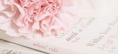 Gentle pink carnation created with kk_gentle LR preset by Kim Klassen by Barb Brookbank