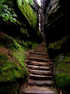 Canyon Steps, The Black Forest, Germany... <3 www.24kzone.com