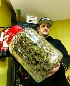 Buy High Grade Medical Marijuana | Weed For Sale | THC and CBD Oil For Sale | Edibles For Sale | Hemp Oil | Wax Oil | At Affordable Price Text/call +1 (908)485-7293 website: https://www.legalcannabisshop.com