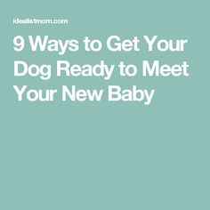 9 Ways to Get Your Dog Ready to Meet Your New Baby